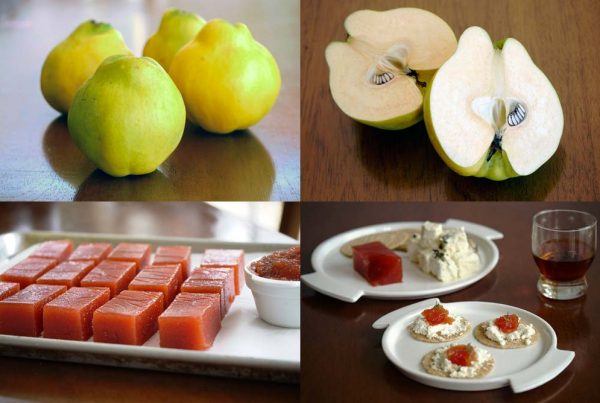Cooking with Quince